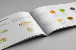 Creating Brand Guidelines Logo Colour