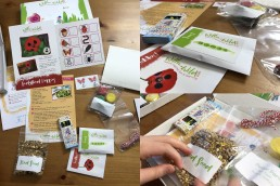 Willow & Wild craft box design and branding